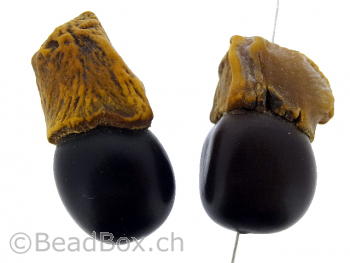 Tomato Bodhi Seed, Color: brown, Size: ±39x20mm, Qty: 1 pc.