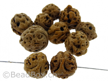 King Kong Bodhi Seed, Color: brown, Size: ±16mm, Qty: 3 pc.
